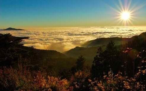 阿里山风景区面积约有175公顷,是台湾著名的天然森林公园和旅游胜地.