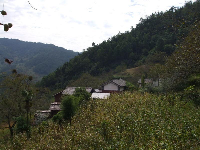 散板村隶属于北斗彝族乡黑豆场村民委员会
