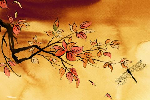秋分图片简笔画