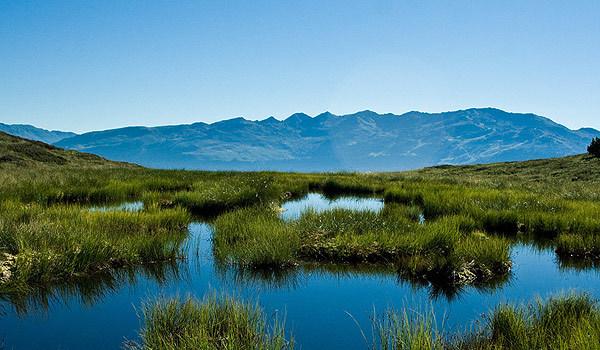"""云南四块高原湿地列入""""国际重要湿地""""名录"""