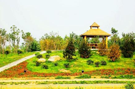 济宁植物园