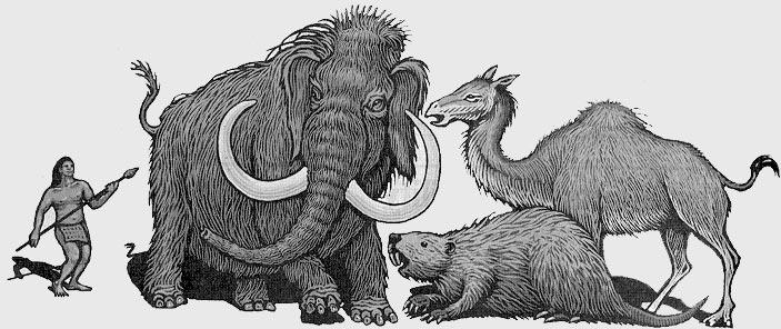 巨兽时代:寻找史前动物的世界